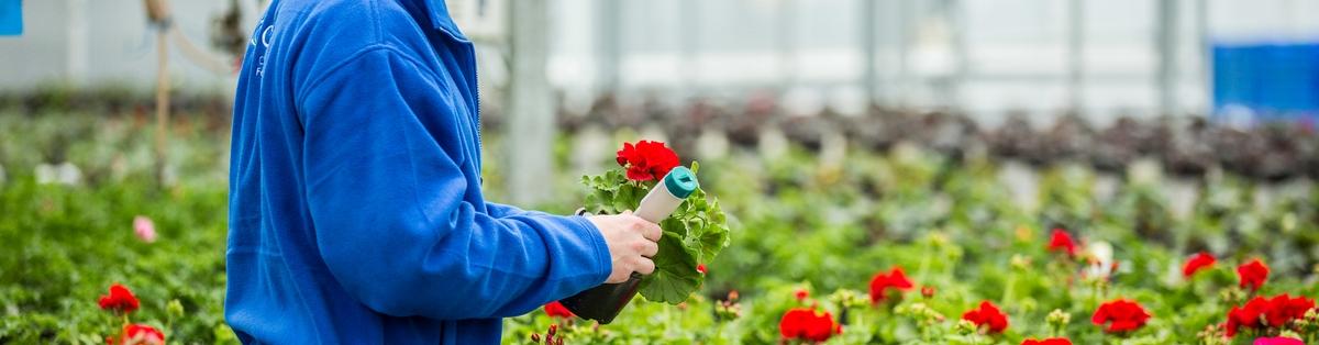 FdSc in Horticulture