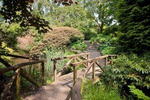 CAFRE-Greenmount Flowers & Gardens