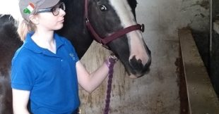 Fianna Lynn pictured on work placement at Meadowvale Equestrian Centre, Magherafelt
