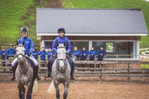 Equine Apprenticeship