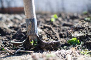 spade-in-soil-digging