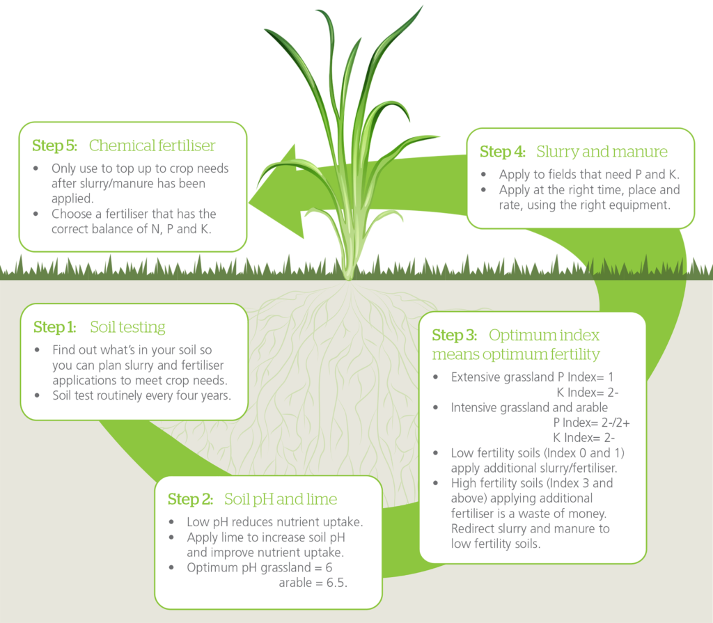 5 steps to managing nutrients Schematic diagram