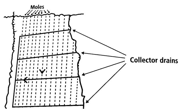Figure-1-Field-diagram-showing-collector-drains