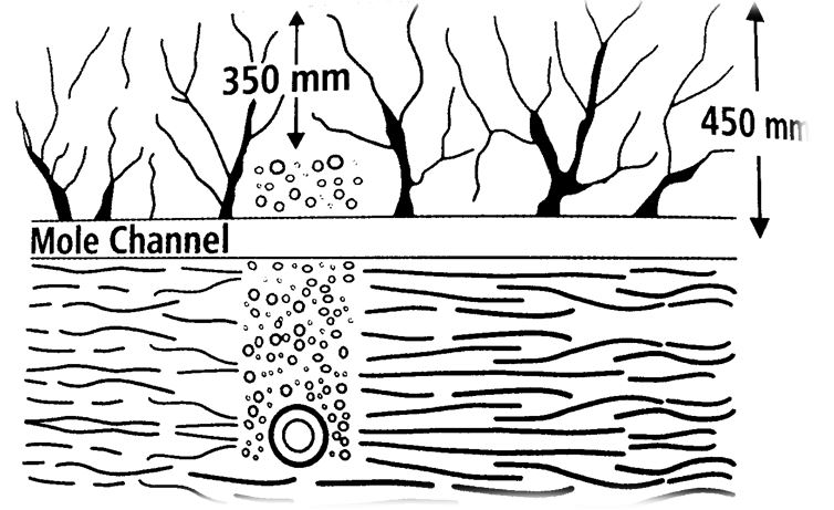 Figure-2-Cross-section-of-collector-drain-with-mole-channel-running-through-it.