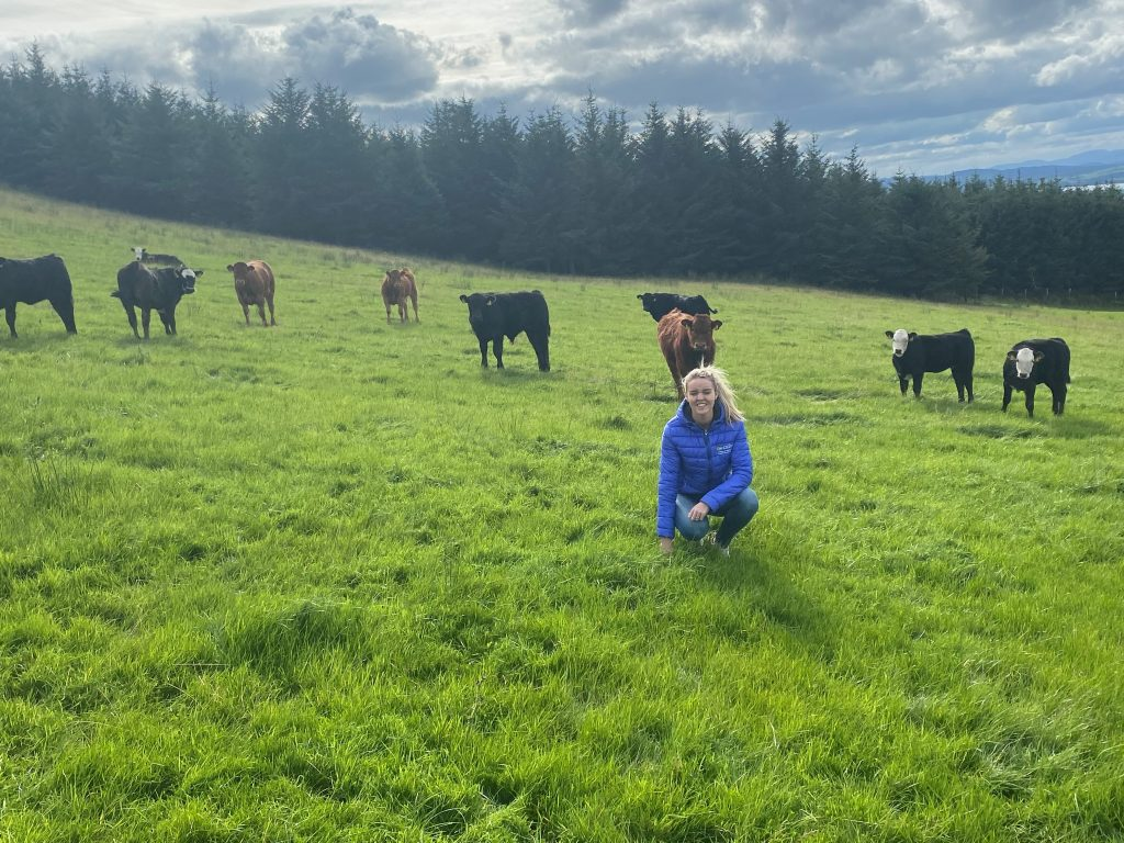 Hannah McNelis in field with beef cattle