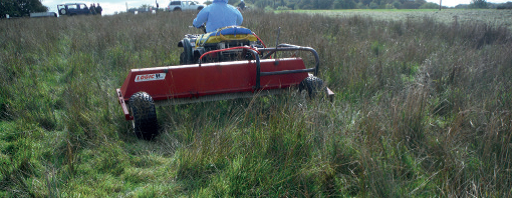 Figure 2 Rush being treated by a weed wiper